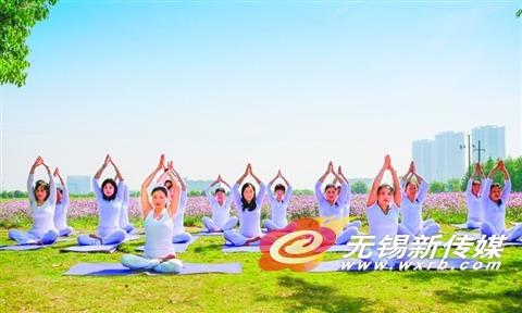 """无锡新吴""""网红花海""""吸引瑜伽爱好者锻炼"""