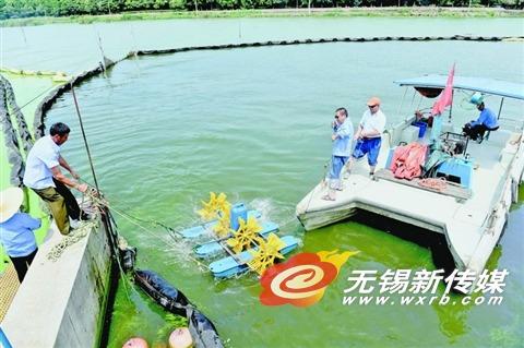 无锡在渔港喇叭口太湖水面上安装增氧装置