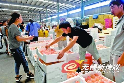 无锡地产水果大量上市 顾客选购水蜜桃